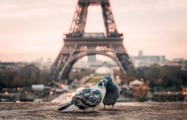 Quem fizer uma encomenda de um Eclat Mon Parfum neste catálogo 14 e publicar uma foto habilita-se a uma viagem a Paris para 2 pessoas